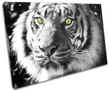 Tiger Wild Animals - 13-1396(00B)-SG32-LO